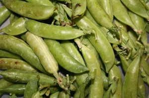 csa-haul-peas